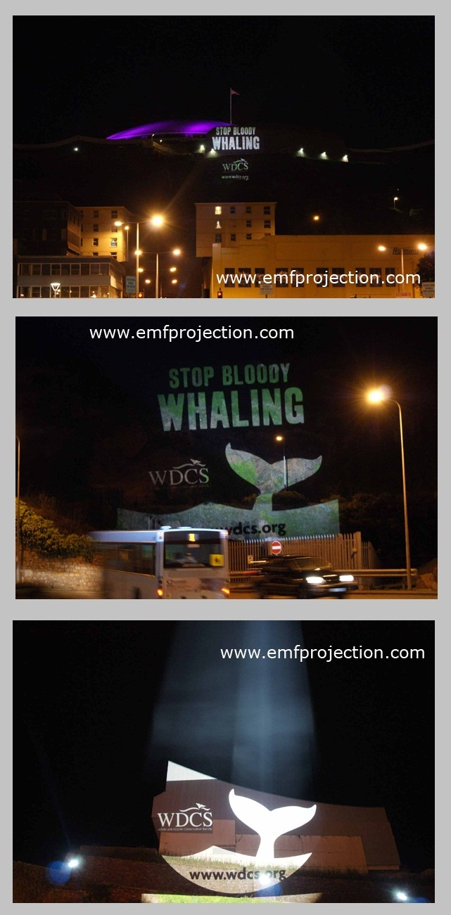 Outdoor Projection Campaign against Whaling, Jersey