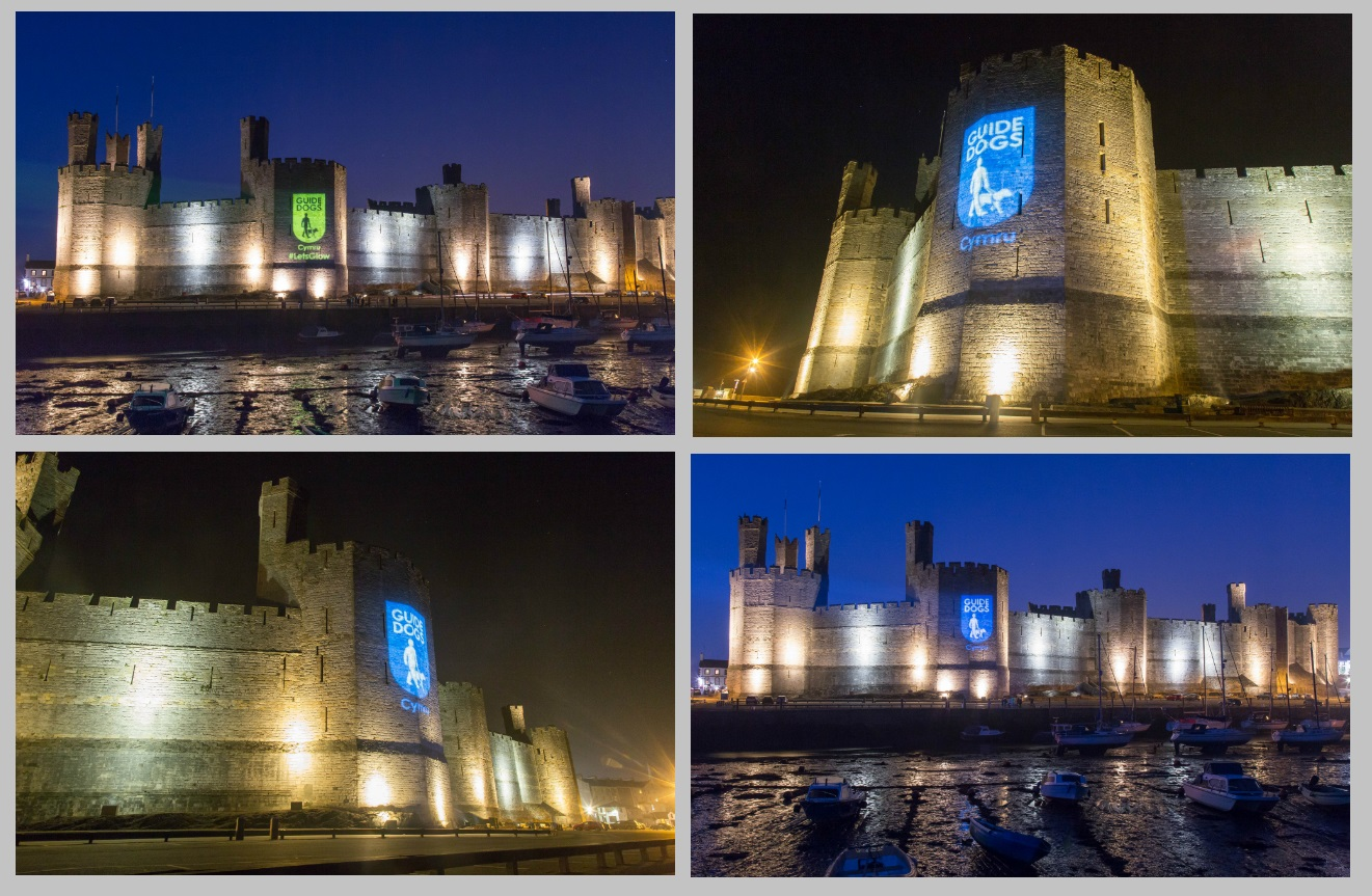 Caernarfon Castle Guide Dog Projections