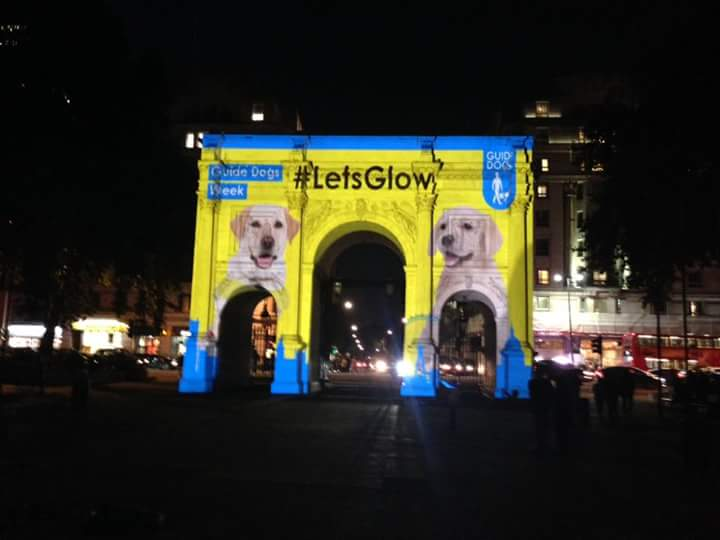 Guide Dog Projection Campaign London