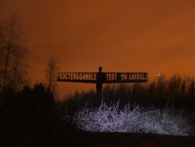 Angel of the North, Large Scale Outdoor Projection.