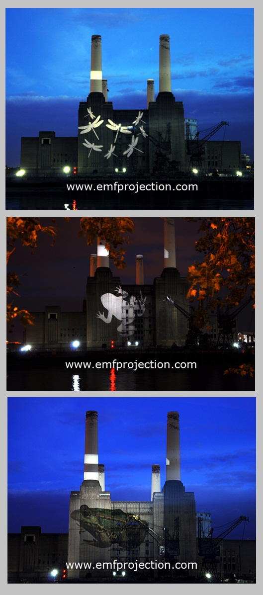 Battersea Power Station Projection for National History Museum exhibition launch