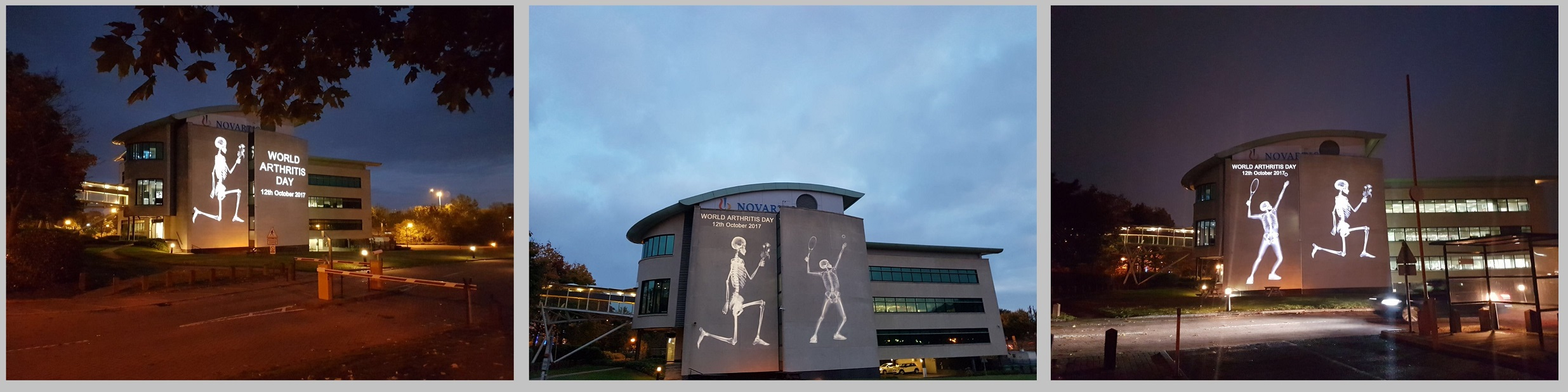 World Arthritis day - Novartis projection