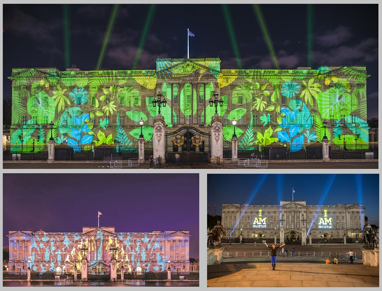 Buckingham Palace building projections